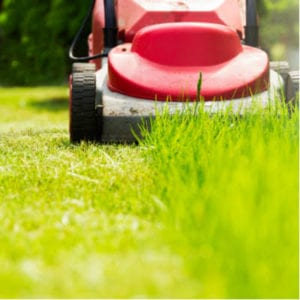 Strategically mowing your lawn can help prevent weeds and retain misture, making it one of the best lawn care tips for 2020.