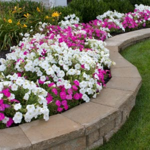Some of the best landscaping and hardscaping features to add to your property include landscaped flower beds like these.